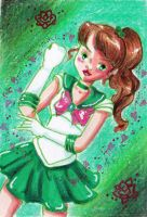 Sailor Jupiter Rose Power by MessiahDeath