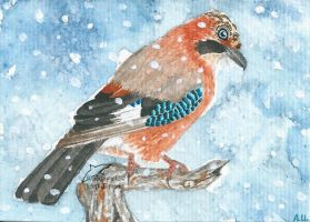 ACEO HeartSoulLifePassion by Woodswallow
