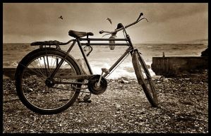 bicycle by volkanersoy