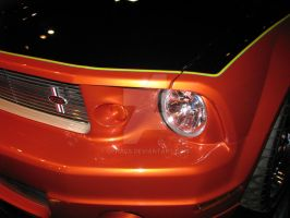 2006 Ford Mustang Stallion by Qphacs