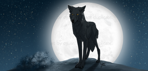Full Moon by InstantCoyote