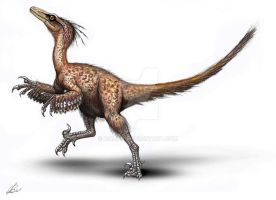 Troodon formosus by MALvit