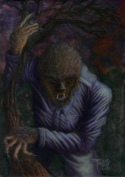 The Wolfman by TAYLOR9