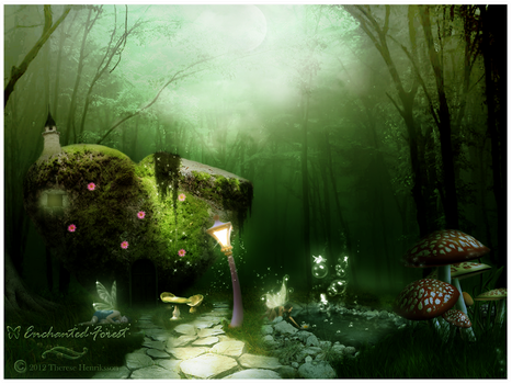 Enchanted Forest by Tdesignstudio