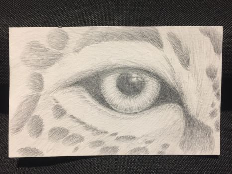 Eye of the Jaguar by LilithR0S3