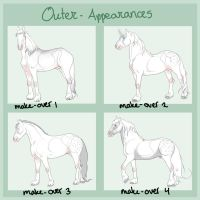 Outer-Appearances Ever by casinuba