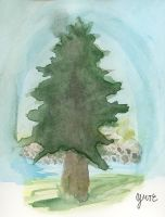 The Pine by Y9ssra