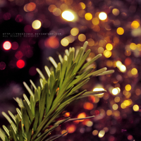 Xmas Branch... by freezinka