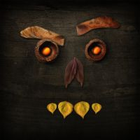 Autumn Face by Scabeater