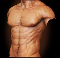 Male Anatomy - Front 02 by shoaibMalik