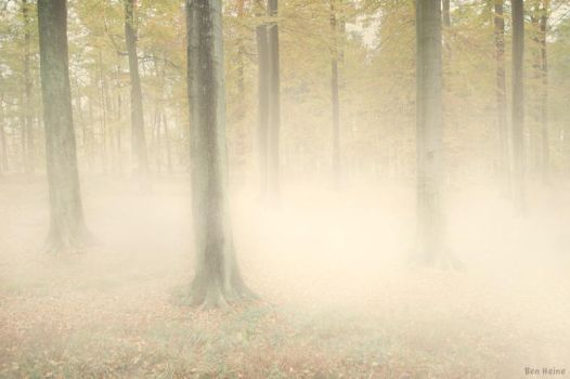 Autumn is There by BenHeine
