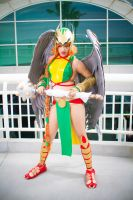 Full Bodied Hawkgirl by kiwi5frog