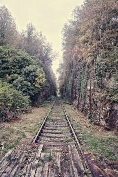 Old road rail by Anupthra