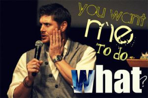jensen asks WHAT by jhallyproductions