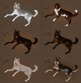 Shepherd-Huskies Adoptables batch 2 - OPEN by elektroyu