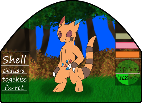 Shell|male|furret/charizard/togekiss by millemusen
