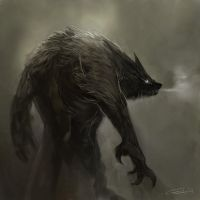New Werewolf by zoppy