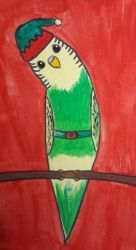 elf budgie by TaitGallery