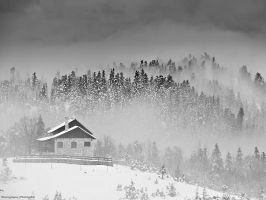 Misty hill by photogrifos