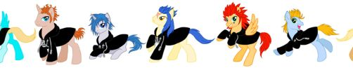 Organisation XIII Ponies by Humanoid-Magpie