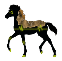 N2847 Padro Foal Design by casinuba