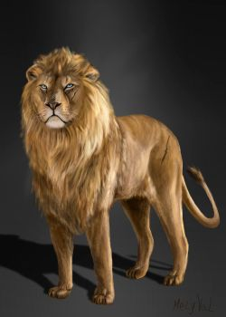 Mighty Lion by Mely-Val