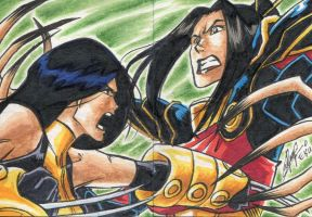 X-23 vs Lady Deathstrike by kitsunx