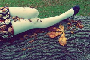 Autumn Legs by SarahCleary