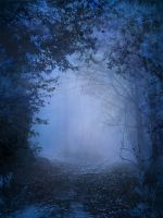 UNRESTRICTED - Mystery Woods Background 02 by frozenstocks
