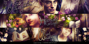 Harry Potter banners by mia47