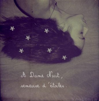 A Dame Nuit. by Feelonia