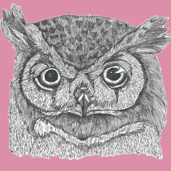 Owl Face in pink by Malice-InWonderland