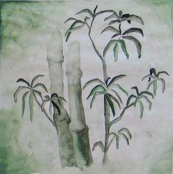 the evergreen bamboo by swach
