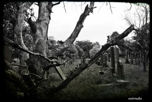 The Cemetery by Estruda