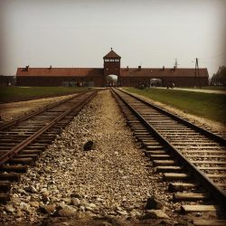 Birkenau by DistortedSmile