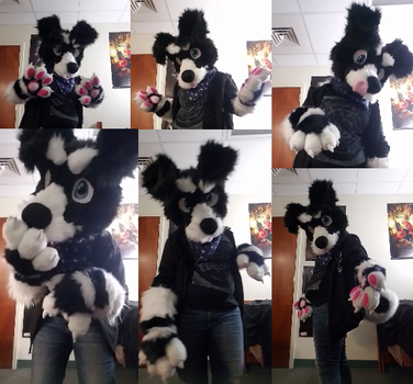Riley fursuit by KaylaMod