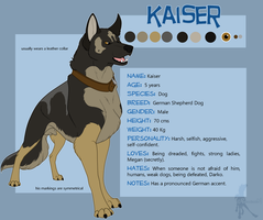 Kaiser Reference Sheet by faithandfreedom