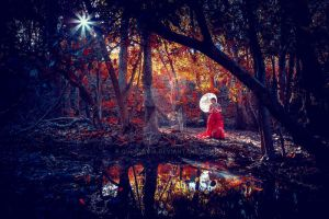 In the Red Woods by Questavia