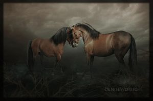 Twin by DeniseWorisch