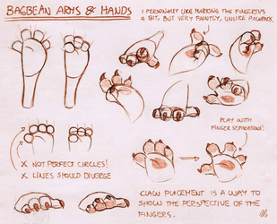 Bara's Guide to Griffians: BB Arms n' Hands by Baraayas