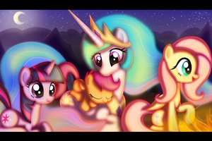 Warmth by CTB-36