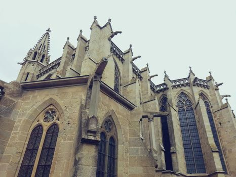 Carcassone's Cathedral by Castleglass