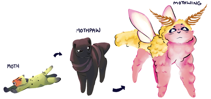mothwing evolution line by vkyw
