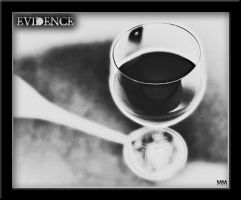 Evidence- by NINperfection