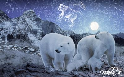 Magical Starry Night of Polar Bears by Nikola096