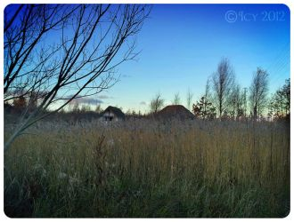 Huts in the grass by IcyCobweb