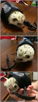 The Walking Hedge by CobblestoneHeart