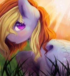 Sunshine by marshmerry