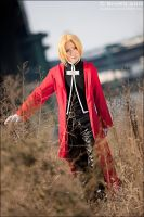 Full Metal Alchemist - 04 by shiroang