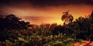 Night in Costa Rica by redxpoison
